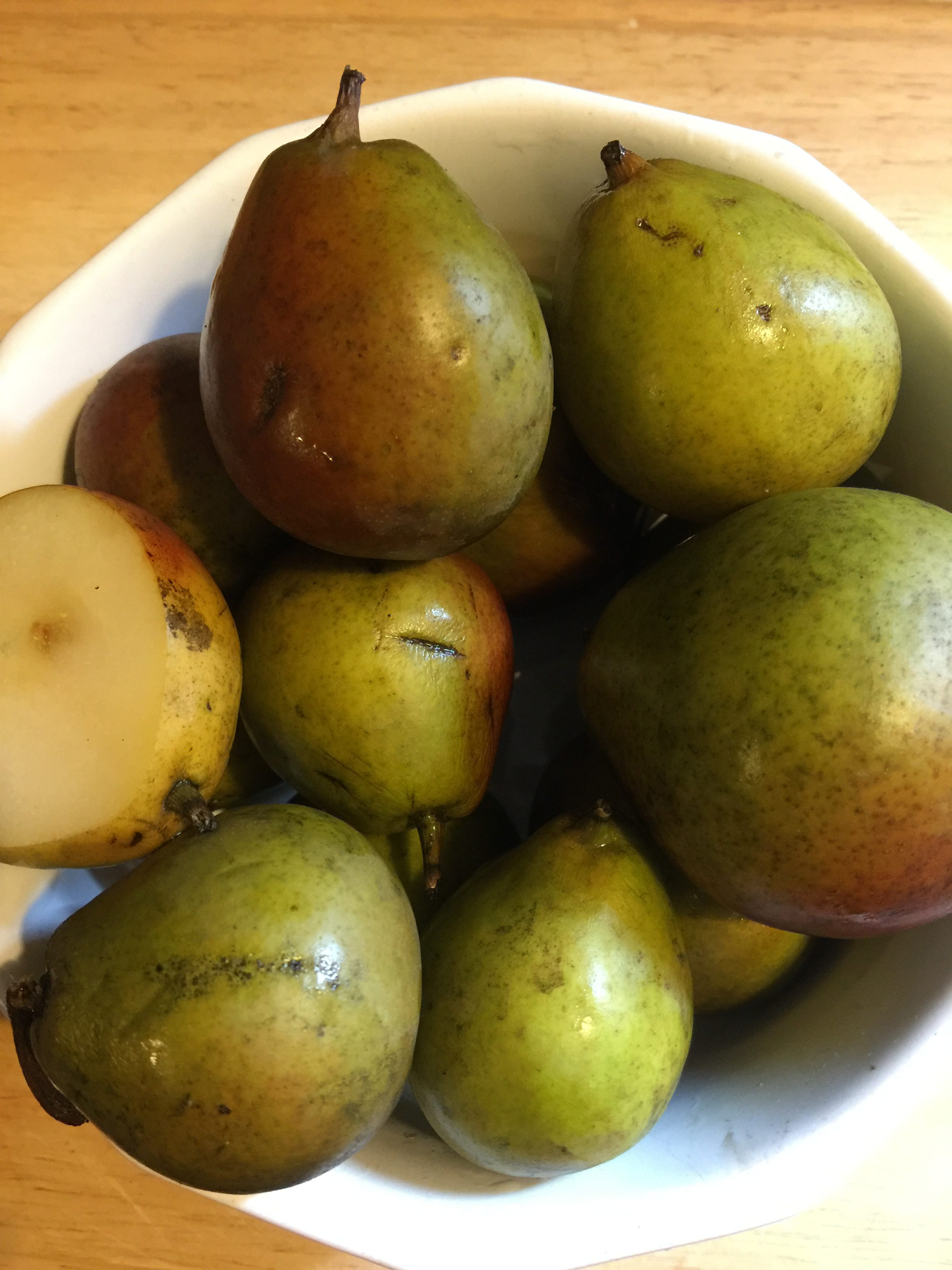 My Love Affair with Seckel Pears
